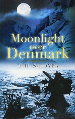 Moonlight over Denmark